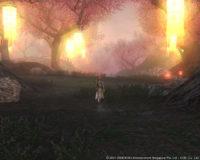 hz080319_1-200x160 - 誘惑の森