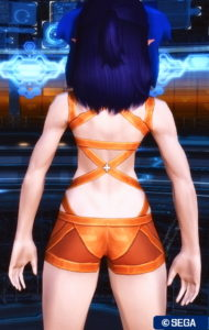 pso2_in_zerdnachaseryou_3-190x300 - PSO2:男の娘SS・5.27~6.2-2020