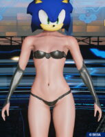 pso2_bodyp_nobresarmsleeve_1-153x200 - PSO2NGS:男の娘系SS・08.04-2021