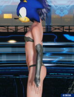 pso2_bodyp_nobresarmsleeve_2-153x200 - PSO2NGS:男の娘系SS・08.04-2021