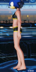 pso2_in_donky2_2-150x300 - PSO2:男の娘っぽいSS・04.07-2021