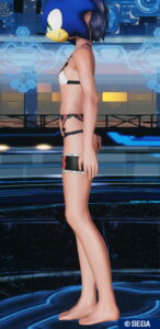 pso2_in_shootingdrive_2-146x300 - PSO2:男の娘っぽいSS・04.21-2021