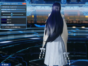 pso2_hair_n-anotherstraightlong_3-300x225 - PSO2:男の娘系SS・04.28-2021