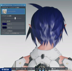 pso2ngs_hair_mesh_4-300x296 - PSO2NGS:男の娘系SS・06.16-2021