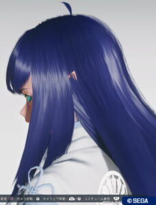 pso2ngs_hair_chelca_3-228x300 - PSO2NGS:男の娘系SS・07.07-2021